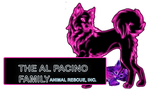 Al Pacino Family Animal Rescue, Inc. Logo